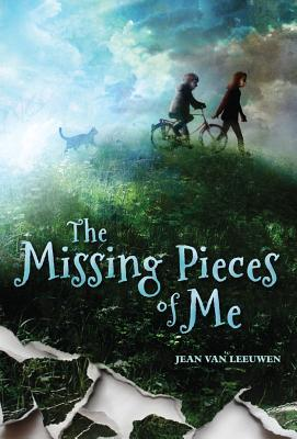 missing-pieces