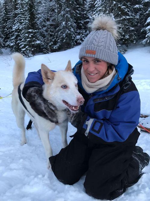 Abi Alaskan husky